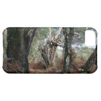 Photography landscape of cork oaks in Doñana Case For iPhone 5C
