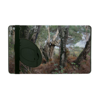 Photography landscape of cork oaks in Doñana iPad Folio Case
