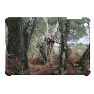 Photography landscape of cork oaks in Doñana iPad Mini Covers