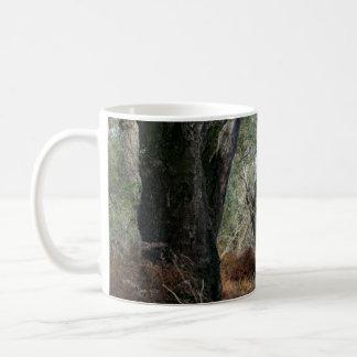 Photography landscape of cork oaks in Doñana Classic White Coffee Mug