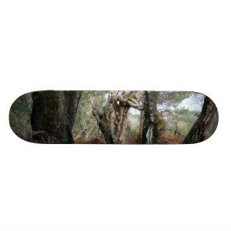 Photography landscape of cork oaks in Doñana Skateboard Deck