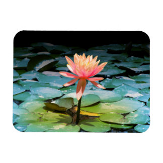 Photography of Flower of Loto Rectangular Photo Magnet