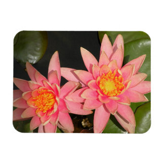 Photography of Flowers of Loto Rectangular Photo Magnet