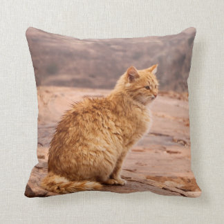 "Photography of ginger Cat on 20""x20"" Pillow"