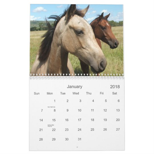 Photography of Horses Calendar