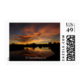 Photography Postage from CapturesReality.com
