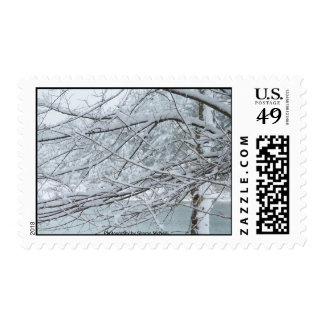 Photography postage winter wonderland 11