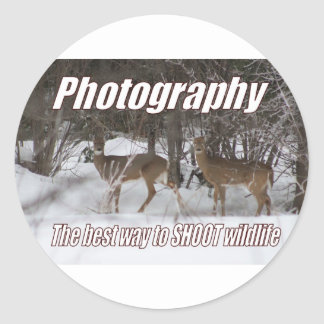 Photography, The best way to SHOOT wildlife Classic Round Sticker