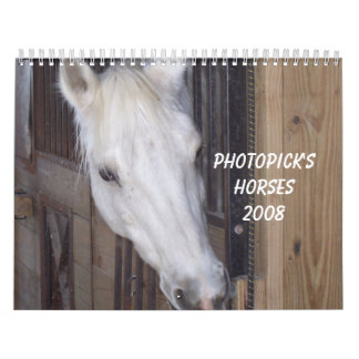 PhotoPicks 2008 Horses Calendar