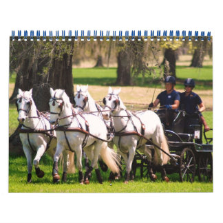 photos from live oak cde 2010 calendar