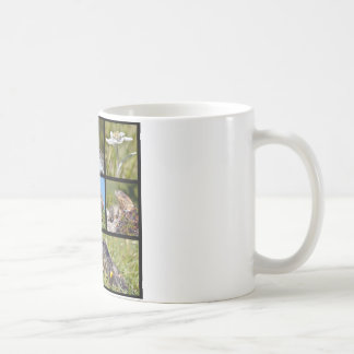 Photos mosaic Alpine marmots and edelweiss Classic White Coffee Mug