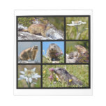 Photos mosaic Alpine marmots and edelweiss Notepad