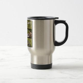 Photos mosaic Alpine marmots and edelweiss Travel Mug
