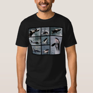 Photos multiple of killer whales shirt