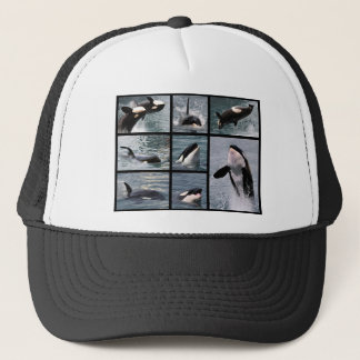 Photos multiple of killer whales trucker hat