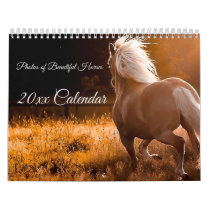 Photos of Beautiful Horses Calendar