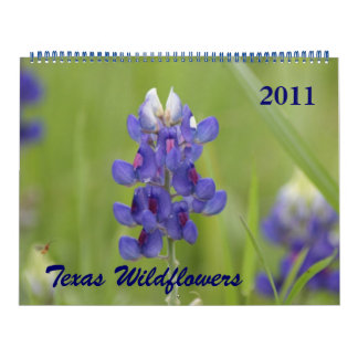 Photos of North Central Texas Wildflowers Calendar