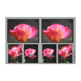 Photos on Canvas - Pink Roses Stretched Canvas Print