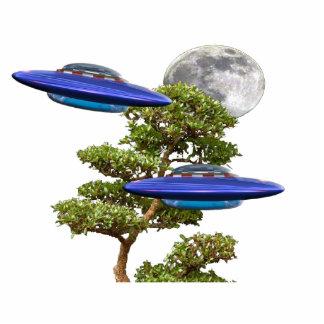 photosculpture ufo standing photo sculpture