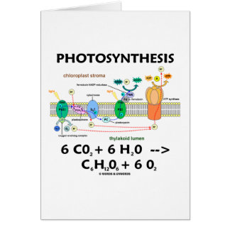 Photosynthesis (Carbon Dioxide + Water) Card