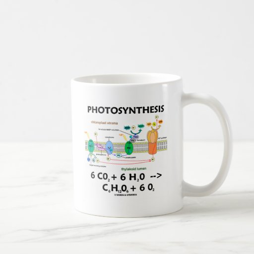 Photosynthesis (Carbon Dioxide + Water) Coffee Mug
