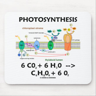 Photosynthesis (Carbon Dioxide + Water) Mouse Pad
