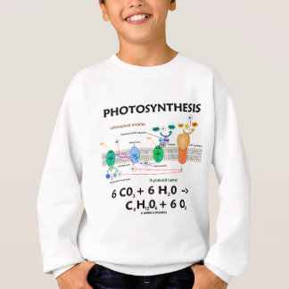 Photosynthesis (Carbon Dioxide + Water) Sweatshirt