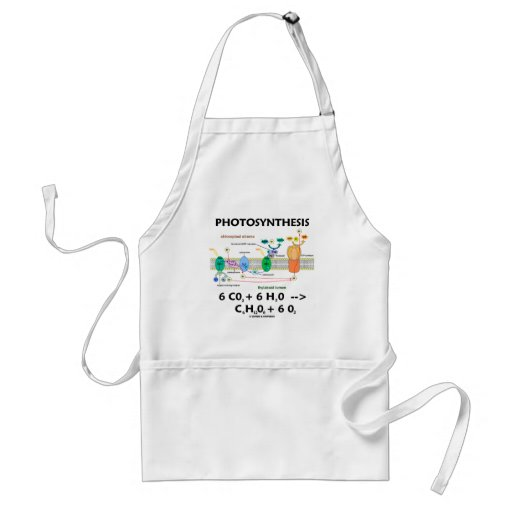 Photosynthesis (Chemical) Formula Aprons