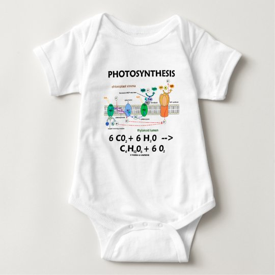 Photosynthesis (Chemical) Formula Baby Bodysuit