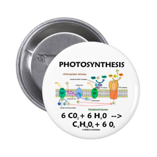 Photosynthesis (Chemical) Formula 2 Inch Round Button
