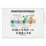 Photosynthesis (Chemical) Formula Card