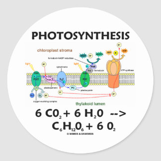 Photosynthesis (Chemical) Formula Classic Round Sticker