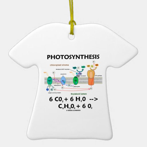 Photosynthesis (Chemical Formula) Double-Sided T-Shirt Ceramic Christmas Ornament
