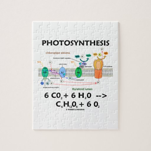 photosythesis chemical Photosynthesis can be represented using a chemical equation the overall balanced equation is 6co 2 + 6h 2 o ----- c 6 h 12 o 6 + 6o 2 sunlight energy.