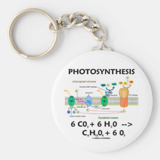 Photosynthesis (Chemical) Formula Basic Round Button Keychain