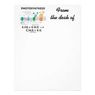 Photosynthesis (Chemical Formula) Letterhead