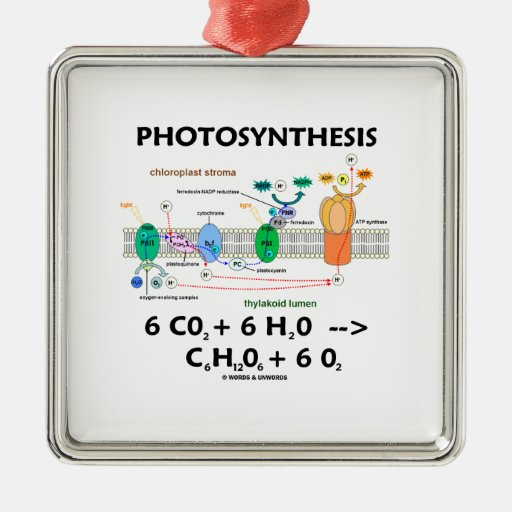 Photosynthesis (Chemical Formula) Square Metal Christmas Ornament