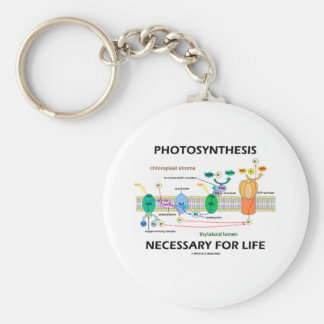 Photosynthesis Necessary For Life Keychain