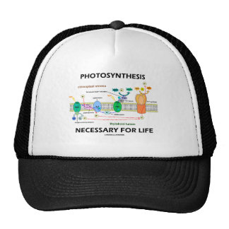 Photosynthesis Necessary For Life Trucker Hat