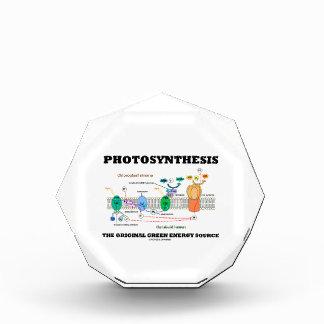Photosynthesis The Original Green Energy Source Awards