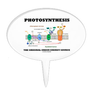 Photosynthesis The Original Green Energy Source Cake Topper