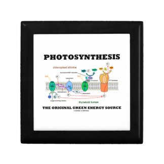 Photosynthesis The Original Green Energy Source Jewelry Box