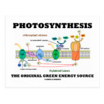 Photosynthesis The Original Green Energy Source Postcard