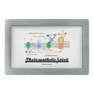 Photosynthetic Spirit (Biochemistry Attitude) Belt Buckles