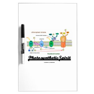 Photosynthetic Spirit (Biochemistry Attitude) Dry Erase White Board