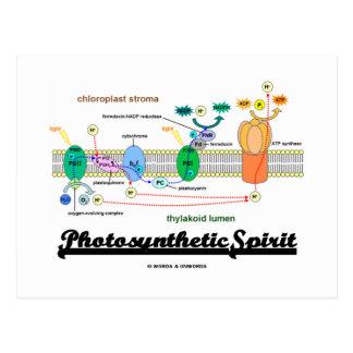 Photosynthetic Spirit (Biochemistry Attitude) Postcard