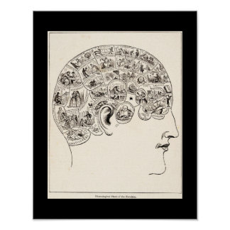 Phrenological chart of the faculties, vintage art poster