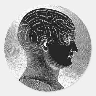 Phrenology Head Classic Round Sticker