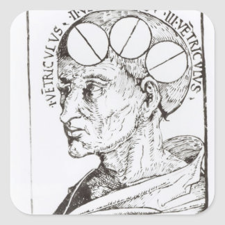 Phrenology Square Sticker