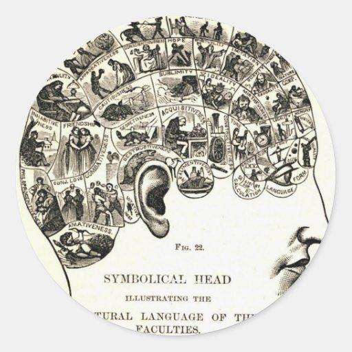 Phrenology Round Sticker